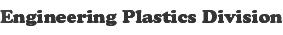 Engineering Plastics Division