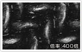 PFA薄膜・高密度ネット イメージ画像